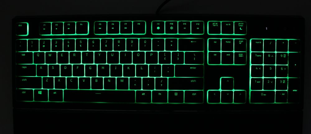 razer ornata backlit green